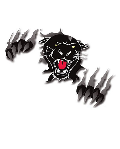 Panther Security image